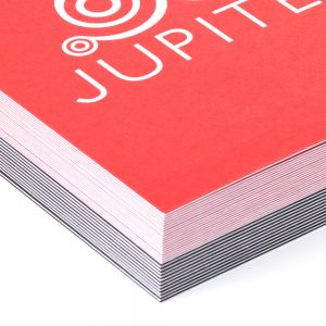 Detail of Duplex business card